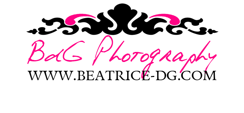 Logo Béatrice de Guigné
